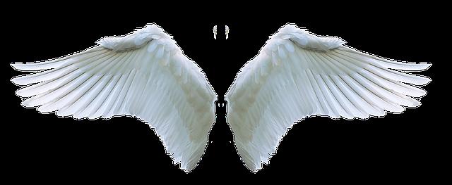 llamador-de-angeles