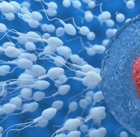 primera fecuncion in vitro experiencia